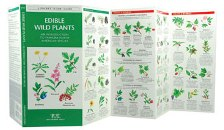 Pocket Naturalist: Edible Wild Plants